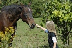Cavalo Loving Imagens de Stock Royalty Free