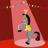 Cavalo no circo Imagem de Stock Royalty Free
