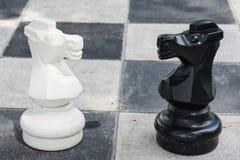 Cavalo preto e branco do jogo de xadrez grande Imagens de Stock