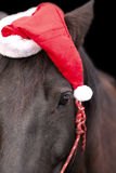 Cavalo preto que veste o chapéu de Santa Fotografia de Stock