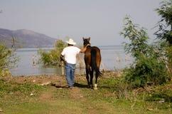 Cavalo principal do homem ao lago Fotografia de Stock Royalty Free