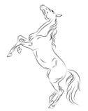 Cavalo que eleva acima do esboço Fotografia de Stock