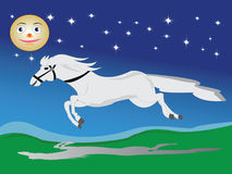 Cavalo que funciona Fotografia de Stock