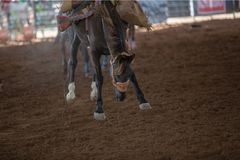 Cavalo que tenta a Buck Off Rider At Rodeo Imagens de Stock Royalty Free