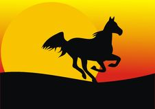 Cavalo rápido Fotografia de Stock