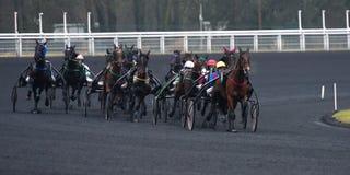 Cavalo Racing Foto de Stock Royalty Free