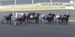 Cavalo Racing Imagem de Stock Royalty Free