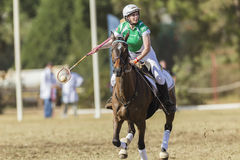 Cavalo Rider Women Ireland de PoloCrosse Fotos de Stock Royalty Free