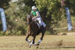 Cavalo Rider Women Ireland de PoloCrosse Foto de Stock