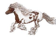 cavalo running, com aventura cômica do cavalo Fotos de Stock Royalty Free