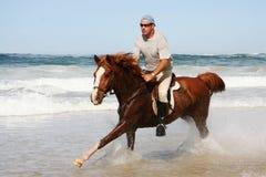 Cavalo Running na praia Foto de Stock