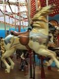 Cavalo selvagem do carrossel Foto de Stock