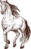 Cavalo Striding ilustração do vetor