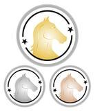 Cavalos da competição Fotos de Stock Royalty Free