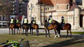 Cavalos da polícia em uma praça da cidade Fotografia de Stock