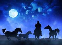 Cavalos da sagacidade do vaqueiro da silhueta Fotografia de Stock