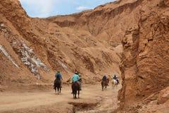 Cavalos de equitação dos povos no vale de Marte Fotografia de Stock Royalty Free
