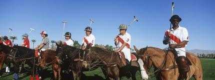 Cavalos de Polo Players And Umpire On Foto de Stock