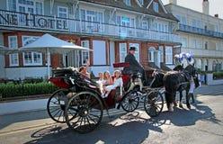 Cavalos do casamento Foto de Stock Royalty Free