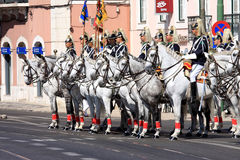 Cavalos do regimento e do Lusitano de cavalaria, Lisboa Foto de Stock Royalty Free