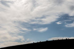 Cavalos e céu grande Imagens de Stock