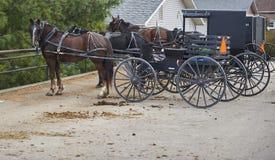 Cavalos e carrinhos de Amish fotografia de stock