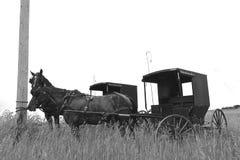 Cavalos e carrinhos de Amish amarrados a um cargo do telefone fotografia de stock