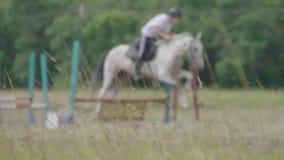 Cavalos e jóqueis de raça que saltam sobre um obstáculo Efeito do borr?o video estoque