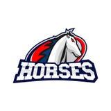 Cavalos Logo Template Foto de Stock Royalty Free