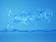 Cavalos no respingo da água Fotos de Stock Royalty Free