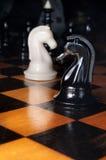 Cavalos preto e branco da xadrez Imagens de Stock