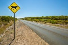 Cavalos que cruzam o sinal Imagens de Stock