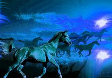 Cavalos que funcionam na noite Imagem de Stock Royalty Free