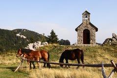 Cavalos que pastam no pasto na frente da capela imagens de stock royalty free