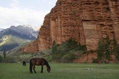 Cavalos que pastam, rochas vermelhas em Djety Oguz, Quirguizistão Fotografia de Stock Royalty Free