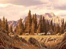 Cavalos selvagens nas Montanhas Rochosas ilustração royalty free