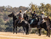 Cavalry Fight Stock Images