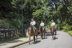 Cavalry of Kuala Lumpur City Hall Royalty Free Stock Photos