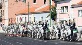 Cavalry Regiment and Lusitano horses, Belem Royalty Free Stock Images