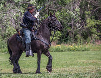 Cavalry Scout Royalty Free Stock Photos