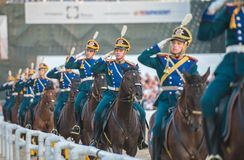 cavalryman Lizenzfreies Stockfoto