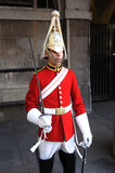 Cavalryman on parade. Stock Photos