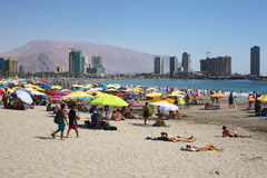 Cavancha Beach in Iquique, Chile Stock Images