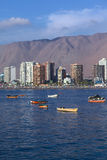 Cavancha Beach in Iquique, Chile Royalty Free Stock Photography