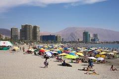 Cavancha strand i Iquique, Chile Arkivfoto