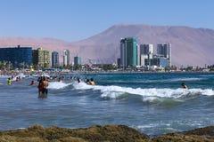 Cavancha strand i Iquique, Chile Arkivbild