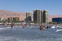 Cavancha strand i Iquique, Chile Fotografering för Bildbyråer