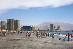 Cavancha strand i Iquique, Chile royaltyfria bilder
