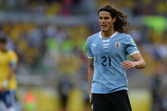 Cavani Royalty Free Stock Images