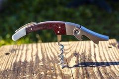 Cavaturaccioli avvitata in un bordo di legno fotografia stock libera da diritti